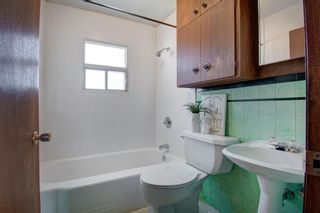 Photo 21: 7724 46 Avenue NW in Calgary: Bowness Detached for sale : MLS®# A1139453