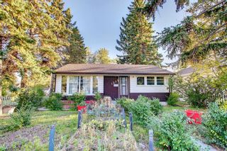 Photo 4: 1235 20 Avenue NW in Calgary: Capitol Hill Detached for sale : MLS®# A1146837