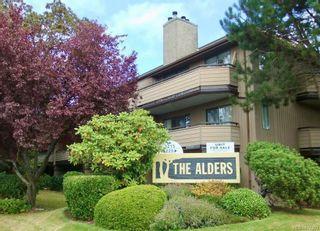 Photo 1: 103 3225 Alder St in : SE Quadra Condo for sale (Saanich East)  : MLS®# 877393
