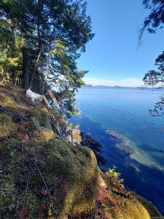 Photo 10: 9844 Canal Rd in : GI Pender Island House for sale (Gulf Islands)  : MLS®# 884964