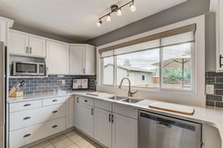 Photo 12: 10219 MAPLE BROOK Place SE in Calgary: Maple Ridge Detached for sale : MLS®# C4304932