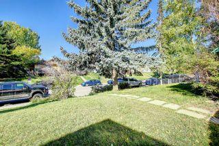 Photo 43: 3036 Doverville Crescent SE in Calgary: Dover Semi Detached for sale : MLS®# A1148570