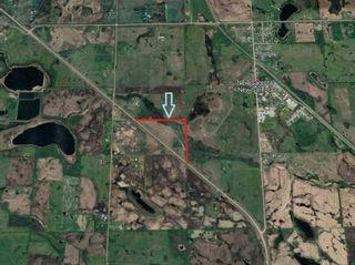 Photo 4: WM4R22TWP49 SEC33 QTR SW: Rural Leduc County Rural Land/Vacant Lot for sale : MLS®# E4243813