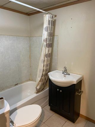 Photo 30: 1722 44 Street SE in Calgary: Forest Lawn Detached for sale : MLS®# A1146827