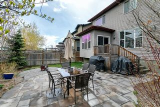 Photo 37: 31 BRIGHTONCREST Common SE in Calgary: New Brighton Detached for sale : MLS®# A1102901