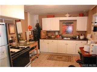 Photo 6: 166 Medana St in : Vi James Bay Multi Family for sale (Victoria)  : MLS®# 331467