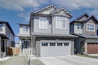Main Photo: 468 Skyview Shores Manor NE in Calgary: Skyview Ranch Detached for sale : MLS®# A1093551