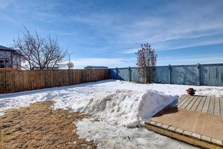 Photo 45: 260 SPRINGMERE Way: Chestermere Detached for sale : MLS®# A1073459
