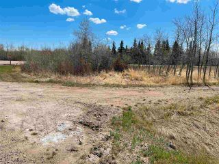 Photo 12: 48 50 Street: Abee Vacant Lot for sale : MLS®# E4243467