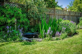 Photo 17: 1230 Chapman St in : Vi Fairfield West House for sale (Victoria)  : MLS®# 611288