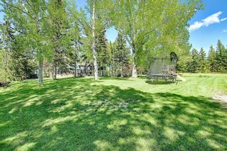Photo 48: 97 Bearspaw Meadows Way NW in Rural Rocky View County: Rural Rocky View MD Detached for sale : MLS®# A1149296