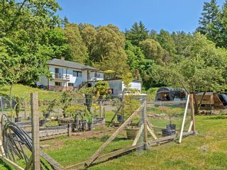 Photo 20: 4525 Blenkinsop Rd in : SE Blenkinsop House for sale (Saanich East)  : MLS®# 868710