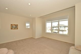 Photo 35: 313 WALDEN Square SE in Calgary: Walden Detached for sale : MLS®# C4206498