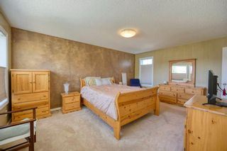 Photo 26: 323 Discovery Place SW in Calgary: Discovery Ridge Detached for sale : MLS®# A1141184