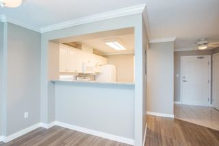"""Photo 6: 1011 12148 224 Street in Maple Ridge: East Central Condo for sale in """"Panorama"""" : MLS®# R2601212"""
