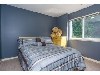 """Photo 14: 3242 RATHTREVOR Court in Abbotsford: Abbotsford East House for sale in """"Mckinley Heights"""" : MLS®# R2191809"""