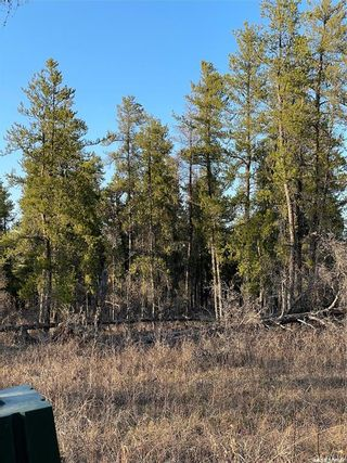 Photo 3: Over one acre lots in Hudson Bay: Lot/Land for sale : MLS®# SK850478