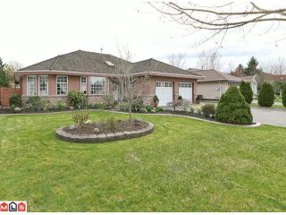 "Photo 1: 21922 45TH Avenue in Langley: Murrayville House for sale in ""Murrayville"" : MLS®# F1109662"
