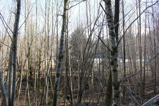 Photo 41: 4325 York Rd in : CR Campbell River South House for sale (Campbell River)  : MLS®# 867428