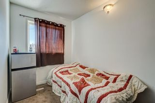 Photo 26: 2740 12 Avenue SE in Calgary: Albert Park/Radisson Heights Detached for sale : MLS®# A1088024