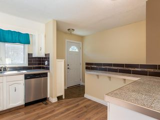 Photo 7: 51 Templewood Mews NE in Calgary: Temple Detached for sale : MLS®# A1039525