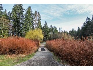 """Photo 11: 2070 FOSTER Avenue in Coquitlam: Central Coquitlam House for sale in """"CENTRAL COQUITLAM"""" : MLS®# V1110577"""