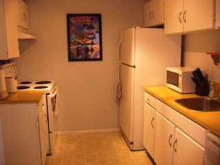 """Photo 9: 203 340 NINTH Street in New Westminster: Uptown NW Condo for sale in """"PARK WESTMINSTER"""" : MLS®# V1047319"""