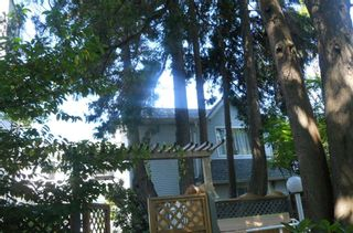 Photo 23: 3761 FRASER Street in Vancouver: Fraser VE Townhouse for sale (Vancouver East)  : MLS®# R2477588