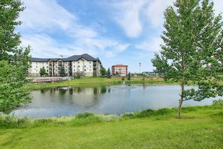 Photo 42: 6413 304 Mackenzie Way SW: Airdrie Apartment for sale : MLS®# A1128019