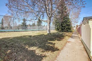 Photo 42: 136 Brabourne Road SW in Calgary: Braeside Detached for sale : MLS®# A1097410