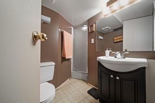 Photo 24: 1931 9A Avenue NE in Calgary: Mayland Heights Detached for sale : MLS®# A1125522