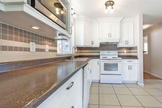 Photo 15: R2567284 - 22197 RIVER RD, MAPLE RIDGE HOUSE