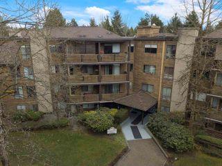 Photo 25: 405 10644 151A STREET in Surrey: Guildford Condo for sale (North Surrey)  : MLS®# R2560461