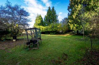 Photo 6: 5550 HALLEY Avenue in Burnaby: Central Park BS House for sale (Burnaby South)  : MLS®# R2125611