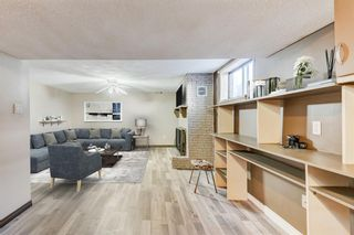 Photo 18: 1949 Lytton Crescent SE in Calgary: Ogden Detached for sale : MLS®# A1134396