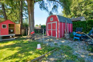 Photo 22: 12147 FLETCHER Street in Maple Ridge: East Central House for sale : MLS®# R2588036