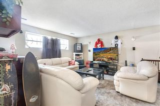 Photo 19: 43 ABERDARE Road NE in Calgary: Abbeydale Detached for sale : MLS®# C4301204