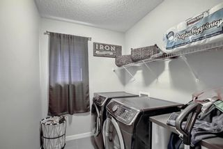 Photo 24: 370 Kings Heights Drive SE: Airdrie Detached for sale : MLS®# A1142904