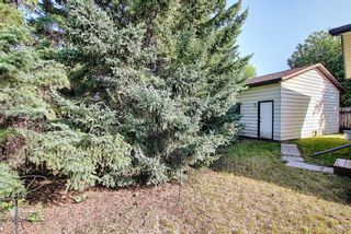 Photo 35: 47 Falworth Place NE in Calgary: Falconridge Detached for sale : MLS®# A1139441