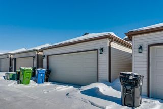 Photo 39: 65 Skyview Point Green NE in Calgary: Skyview Ranch Semi Detached for sale : MLS®# A1070707