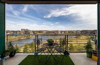 Photo 33: 313 2588 ANDERSON Way in Edmonton: Zone 56 Condo for sale : MLS®# E4247575