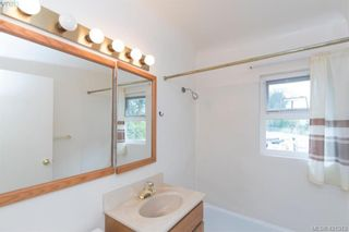 Photo 14: 4546 Markham St in VICTORIA: SW Beaver Lake House for sale (Saanich West)  : MLS®# 833835