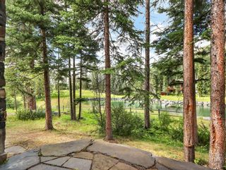 Photo 48: 708 Silvertip Heights: Canmore Detached for sale : MLS®# A1102026