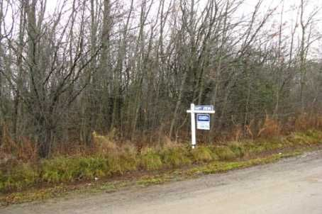 Main Photo: L11 Maple Beach Road in Beaverton: Freehold for sale (N24: BEAVERTON)  : MLS®# N1745968