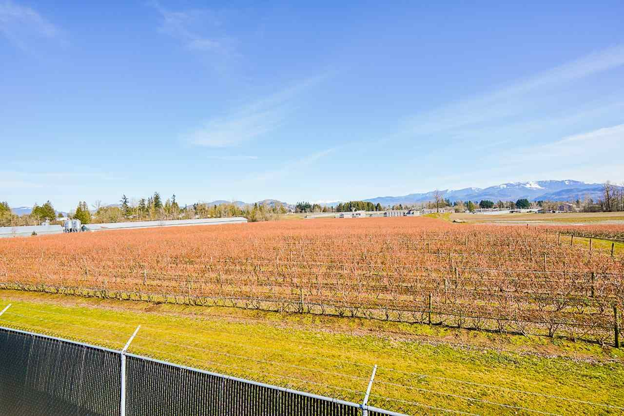 Photo 34: Photos: 1458 GLADWIN Road in Abbotsford: Poplar House for sale : MLS®# R2547303