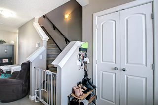 Photo 29: 180 Evanspark Gardens NW in Calgary: Evanston Detached for sale : MLS®# A1144783