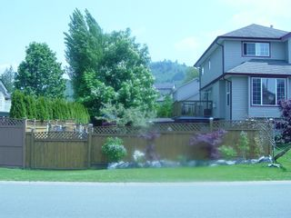 Photo 22: 1 5530 Teskey Road in Chilliwack: House for sale : MLS®# H1102328