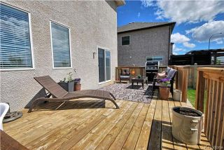 Photo 19: 6 Red Lily Road in Winnipeg: Sage Creek Residential for sale (2K)  : MLS®# 1713010