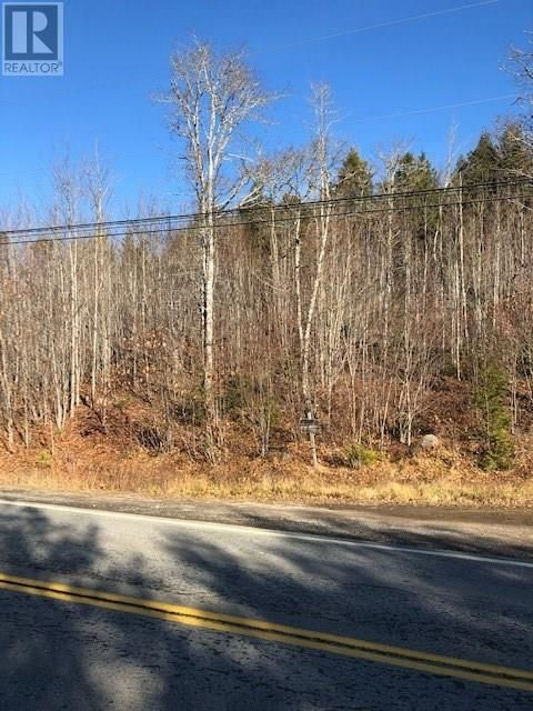 Main Photo: Lot 5 Highway 10 in Pinehurst: Vacant Land for sale : MLS®# 202111797