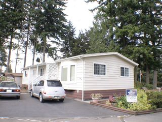 """Photo 1: 196 3665 244 Street in Langley: Otter District Manufactured Home for sale in """"LANGLEY GROVE ESTATES"""" : MLS®# exclusive"""
